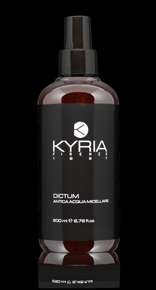 Dictum k001x-d